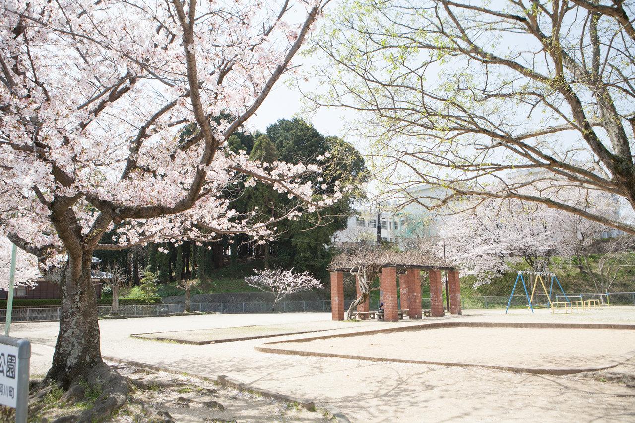 内田公園1