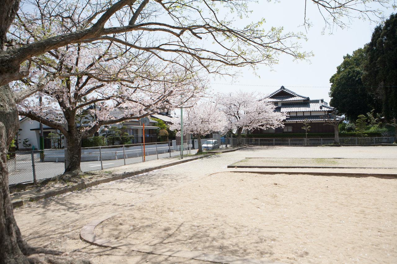 内田公園2