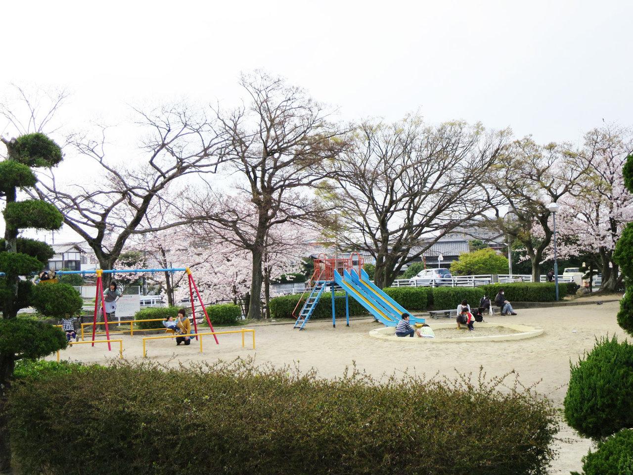 那珂川町の安徳公園の桜3