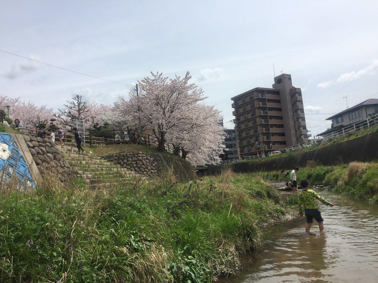 安徳公園脇の小川