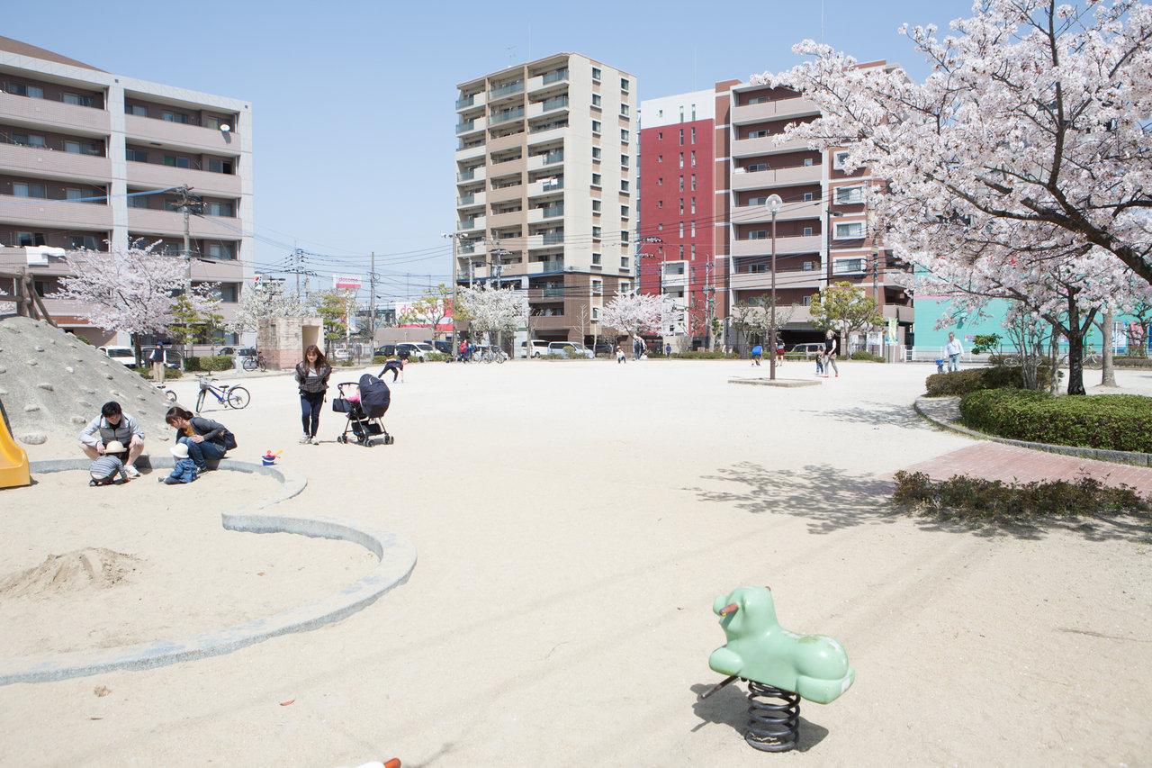野入公園2