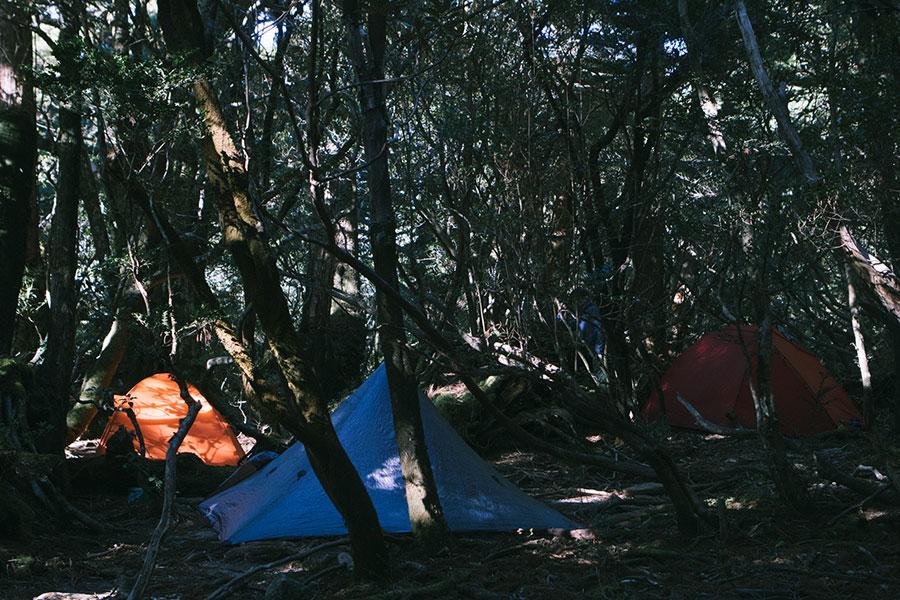 淀川小屋のテント場
