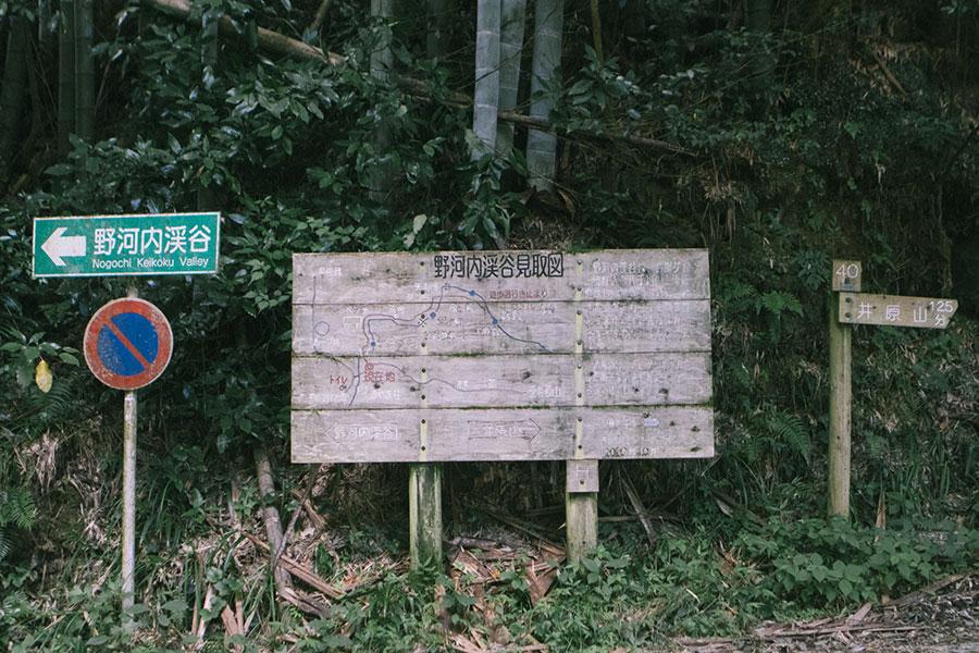 野河内渓谷と井原山の分岐