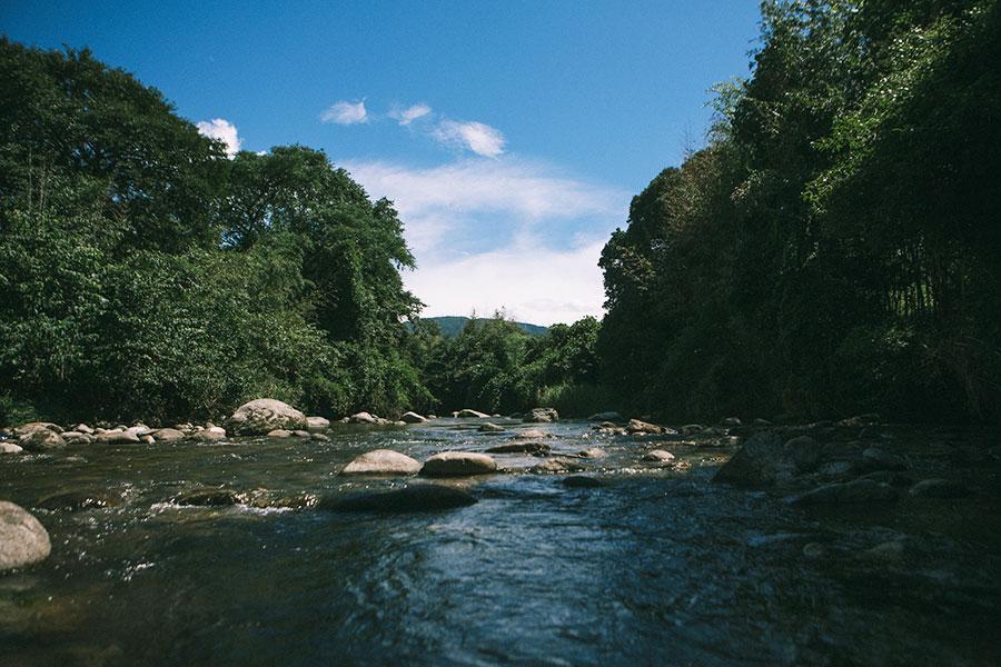 那珂川上流(中ノ島公園)方面の景色