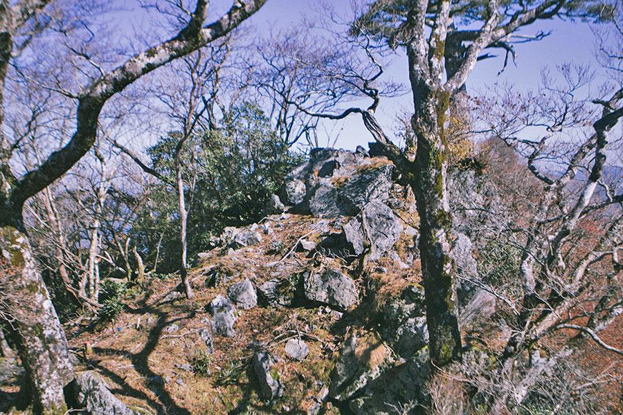 扇山山頂のすぐ脇