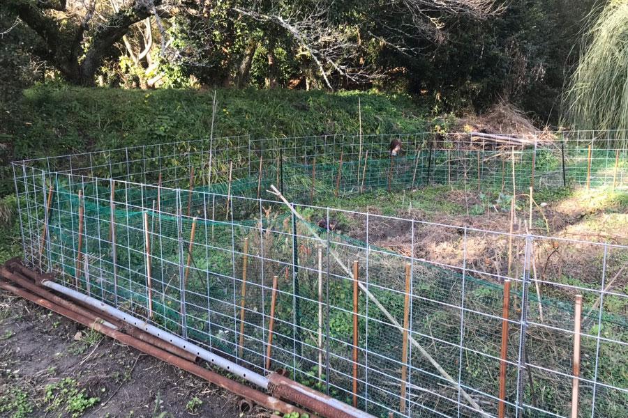 イノシシ用の防護柵を周囲に設置