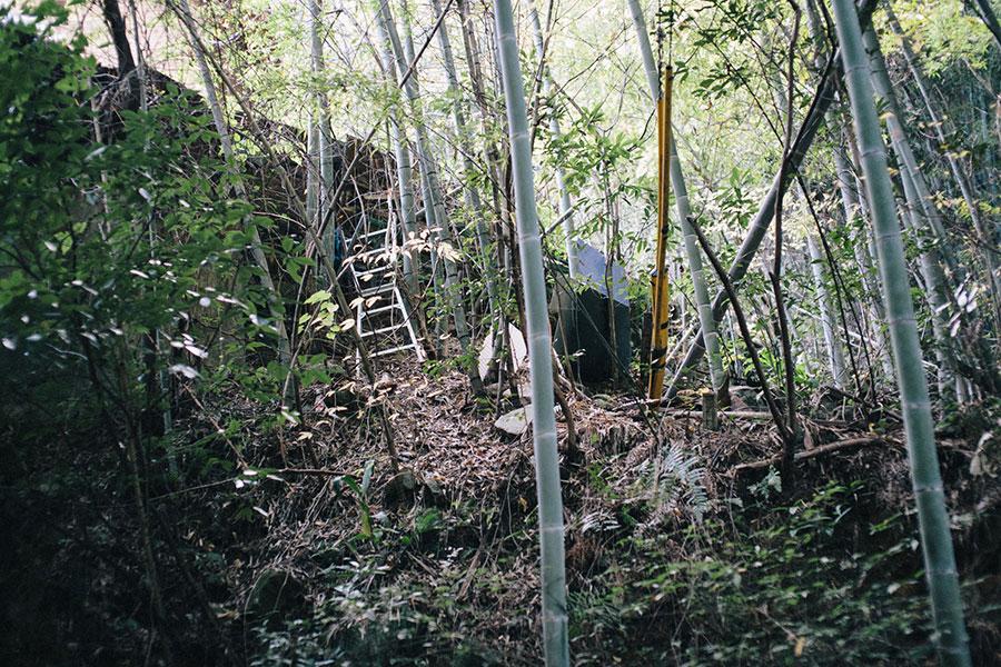 斜面で藪の中の境界を測量していく