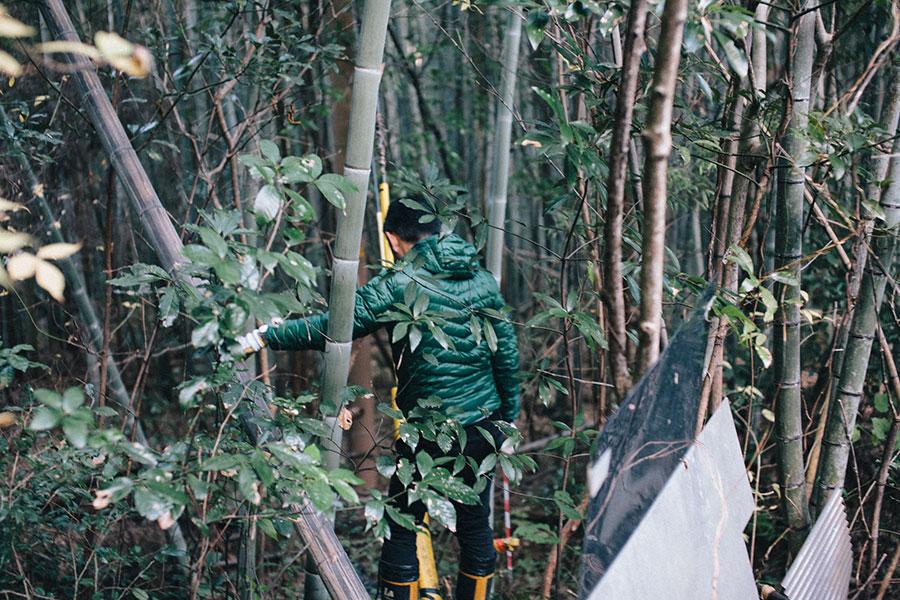 藪の中をいく土地家屋調査士の先生
