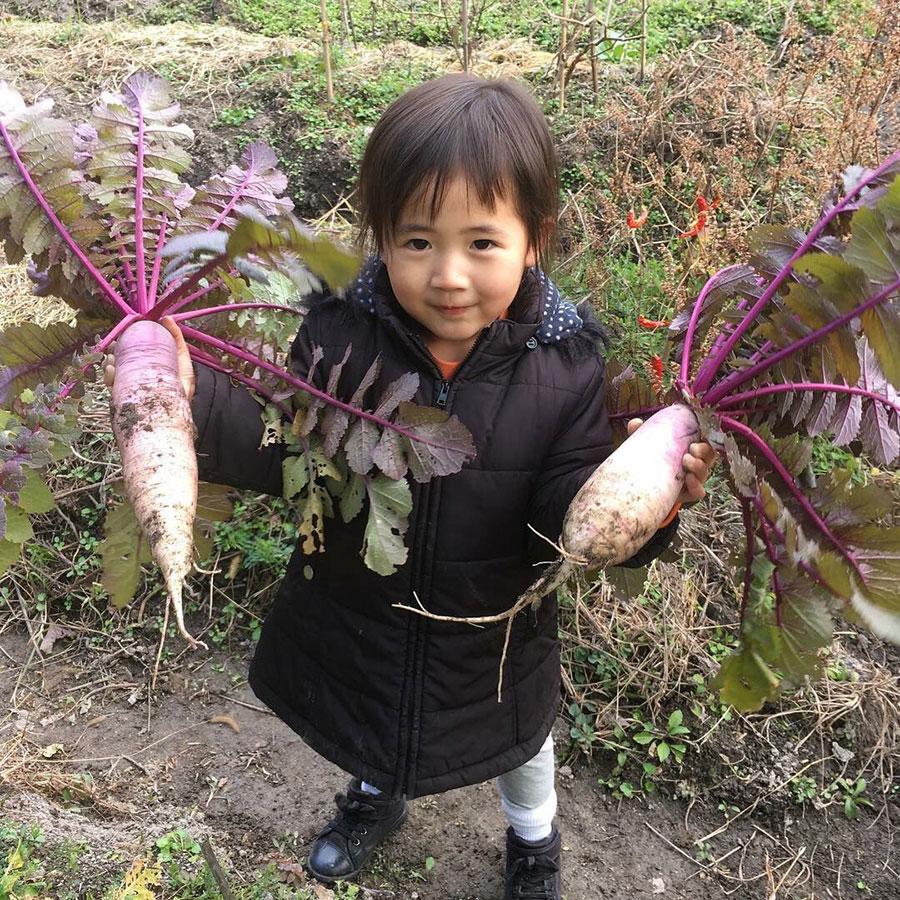 立派な大根が収穫できて満足げな娘