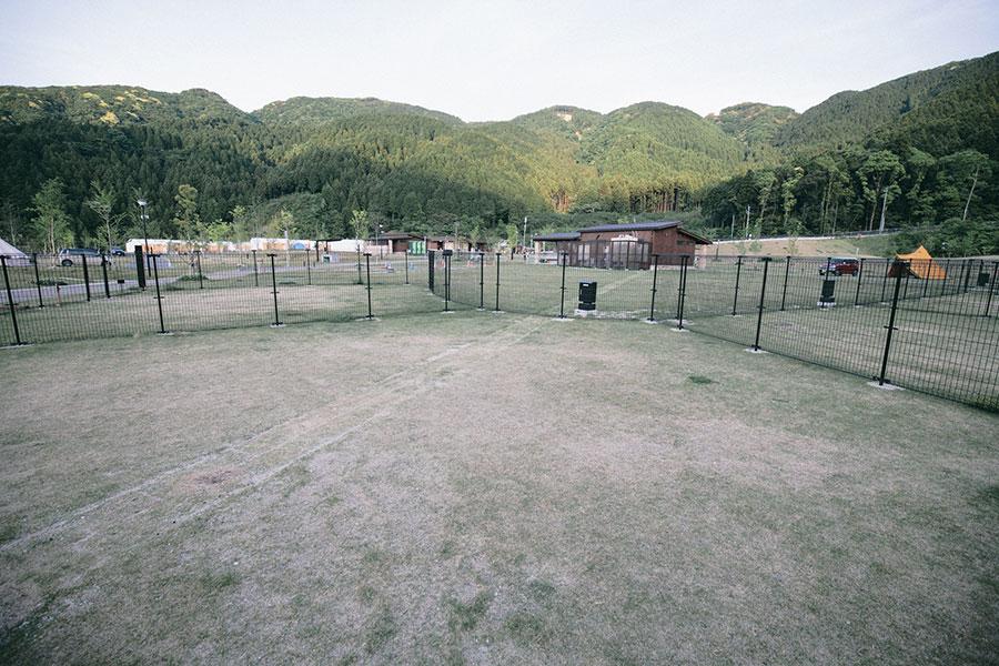 ドギーキャンプサイト(電源付きペット(犬)サイト)