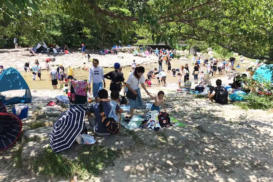 夏休みは大混雑の中之島公園