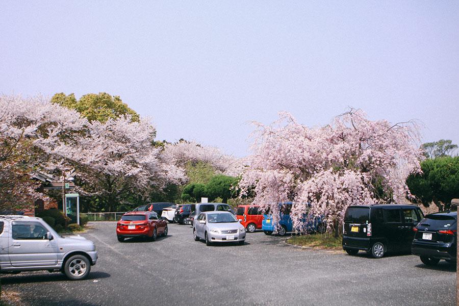 入口付近の駐車場