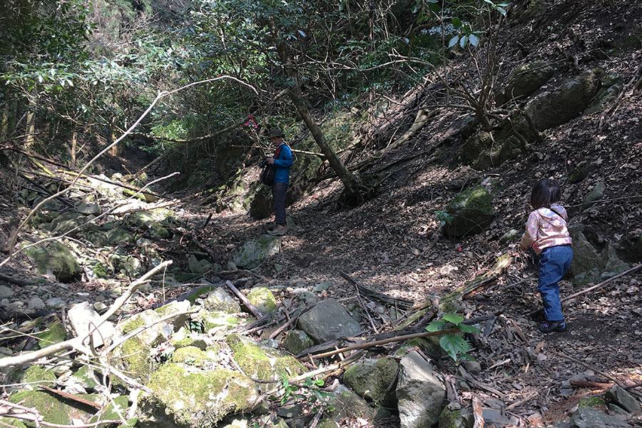 少々荒れてる登山道