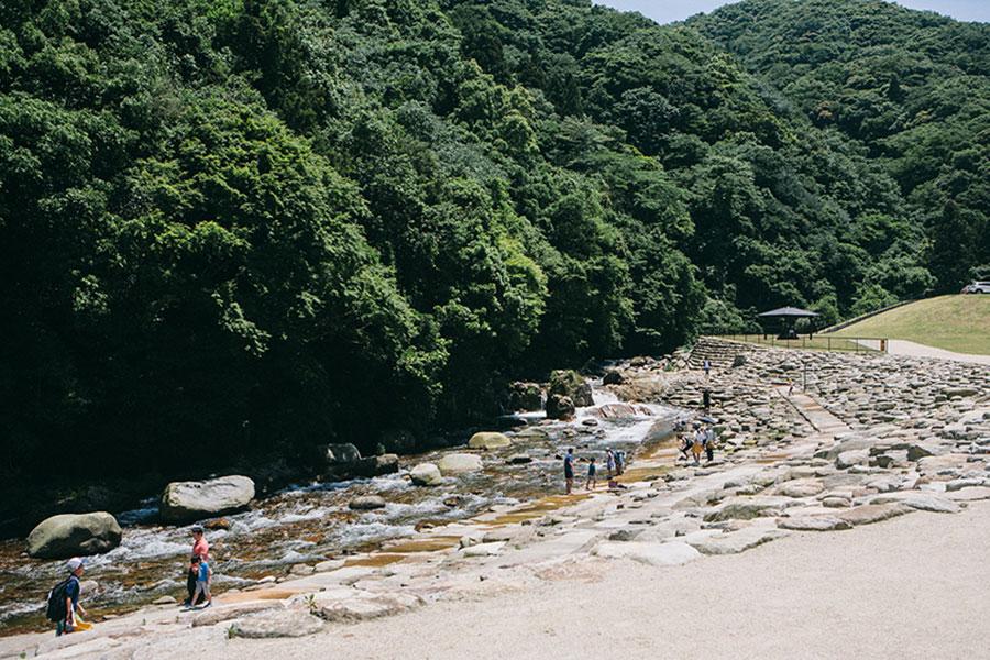 川遊びエリア全景