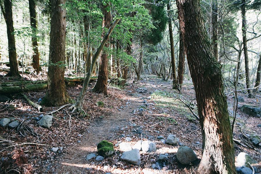 鍋割坂へ向かう道