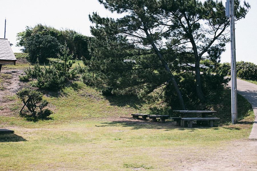 木陰にテーブルとベンチ