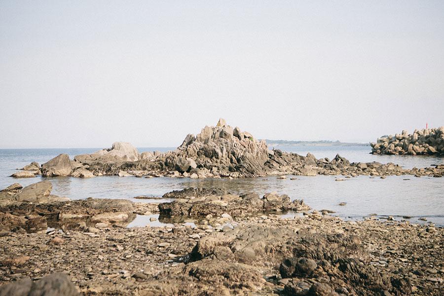 龍の鱗のような平べったい石がたくさん