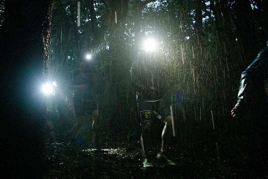 樹林帯でも大粒の雨