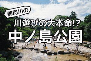 那珂川の川遊びスポットは中ノ島公園がやっぱり大本命!?夏休みは連日大盛況!