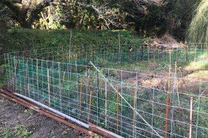 畑のイノシシ対策の最終手段「防護柵(ワイヤーメッシュ)」を設置しました!